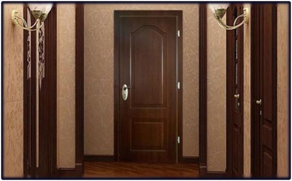 дверь коричневого цвета в квартире