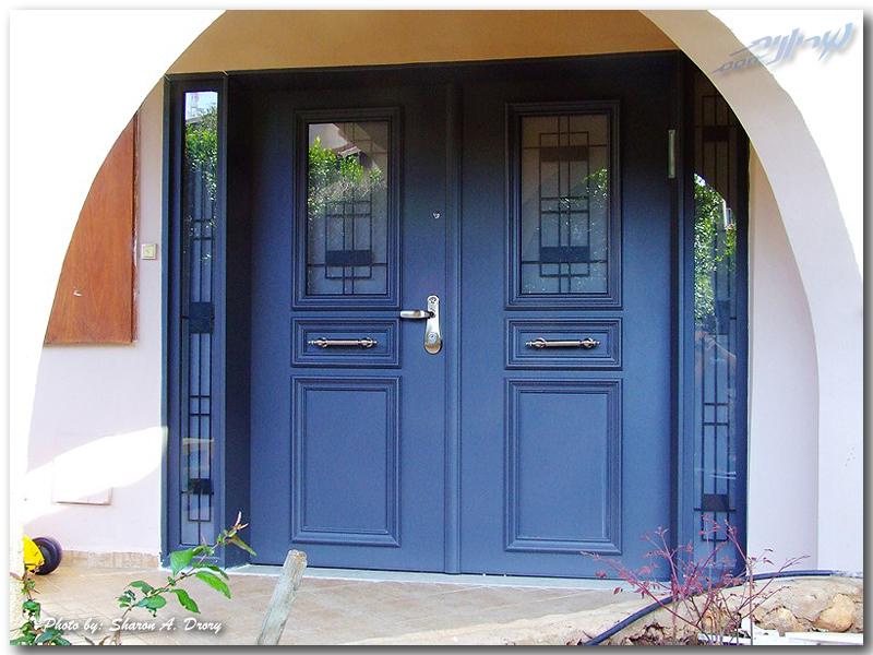 синяя двухстворчатая дверь для загородного дома