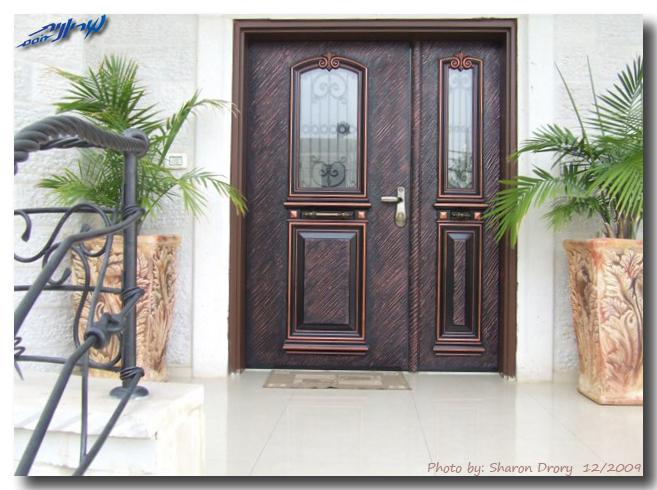 эксклюзивная двухстворчатая дверь для частного дома
